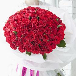 99朵红玫瑰,你是我的最爱
