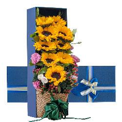 9朵向日葵,桔梗,礼盒装,所有的心愿