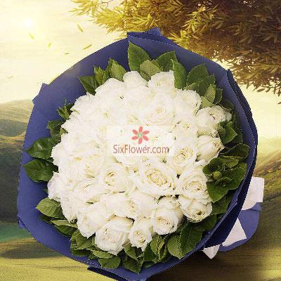 30朵白玫瑰,愿意一生与你在一起