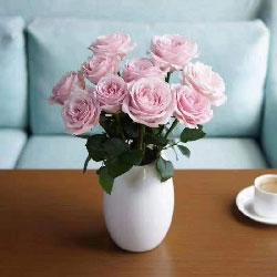 11朵粉玫瑰,精美陶瓷瓶,愿幸福属于我和最爱的你