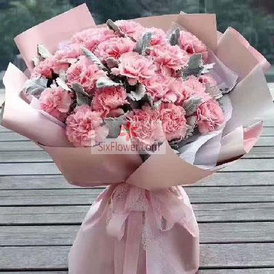 19朵粉色康乃馨,快乐吉祥