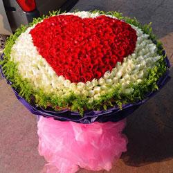 999朵玫瑰,我要用心去爱你