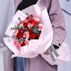 22朵康乃馨,千言万语的爱
