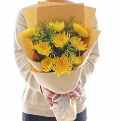 9朵黄色菊花,无畏的精神