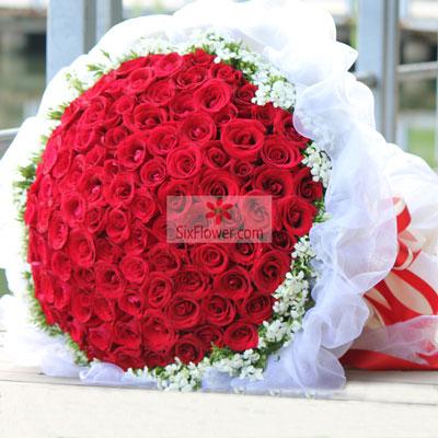 101朵红玫瑰,嫁给我吧