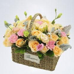 28朵香槟玫瑰,6朵粉色康乃馨,父爱