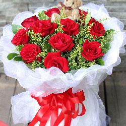 11朵红玫瑰,如画一样的美丽