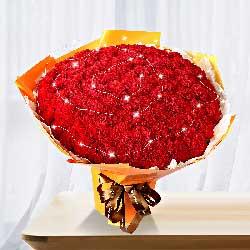 99朵红色康乃馨,贴心小棉袄