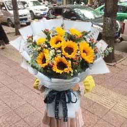 8朵向日葵,愿您过得永远快乐