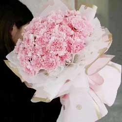 33朵粉色康乃馨,愿您福寿安康