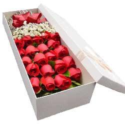 21朵红玫瑰,礼盒装,拥你入怀