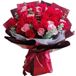 33朵玫瑰,为你在所不惜