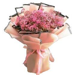 粉色满天星一扎,与你的情
