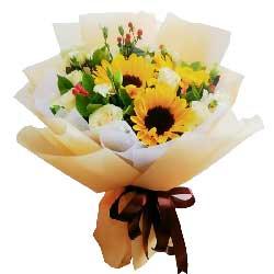 3朵向日葵,11朵香槟玫瑰,愿老爸幸福