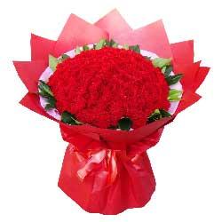 99朵红色康乃馨,忘不了您的爱