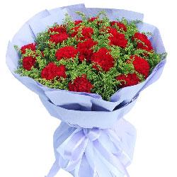 19朵红色康乃馨,黄英丰满,我爱你妈妈
