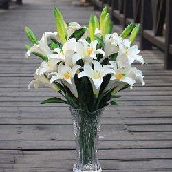 9支白色百合,瓶插花,幸福的记忆