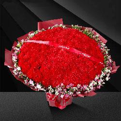 99朵红色康乃馨,平安健康