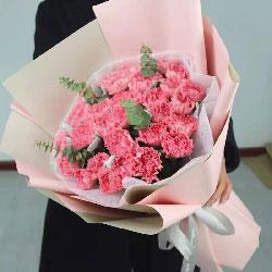 26朵粉色康乃馨,牵挂着您