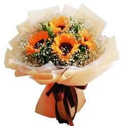 4朵向日葵,满天星丰满,感谢您的教诲