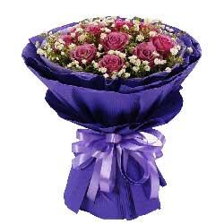 11朵紫玫瑰,思念之情