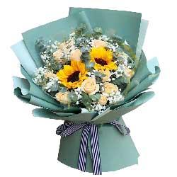 11朵香槟玫瑰,2朵向日葵,您是我的人生向导