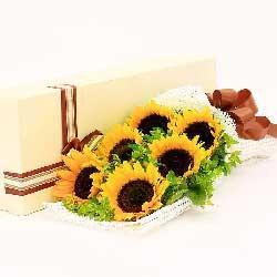 6朵向日葵,礼盒装,诚挚的问候