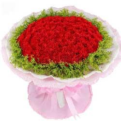 99朵红色康乃馨,我会永远铭记在心
