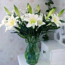 11支白色多头百合,瓶插花,情意永远