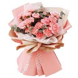 18朵粉色康乃馨,对您的祝福永流淌