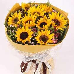 9朵向日葵,一生平安