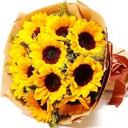 11朵向日葵,给父亲的爱