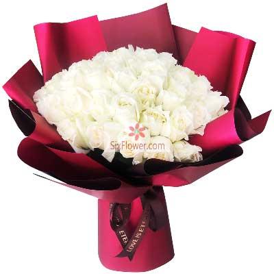 66朵白玫瑰,有你的生活好美