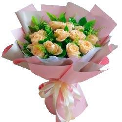 11朵香槟玫瑰,将你真情拥于怀抱