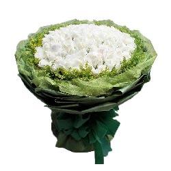 99朵白玫瑰,我会用心去爱你