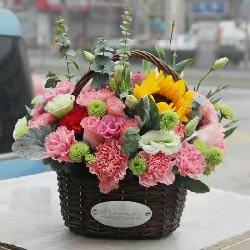19朵粉色康乃馨,精致花篮,祝您幸福健康