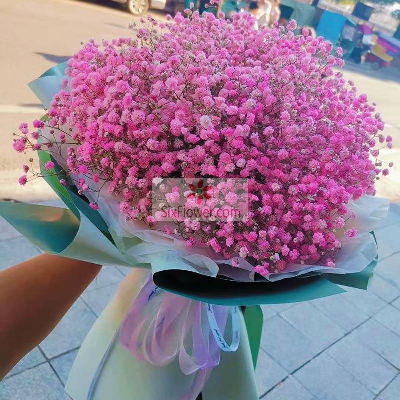 粉色满天星一大扎,幸福爱恋