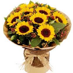 9朵向日葵,祝福你一路