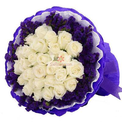 33朵白玫瑰,你是一切