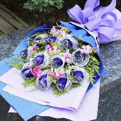 11朵蓝玫瑰,你让我向往