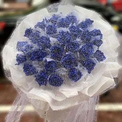 33朵蓝玫瑰,脑海里全是你