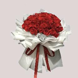 77朵红玫瑰,爱实实在在