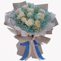 11朵白玫瑰,真爱一心一意永不悔
