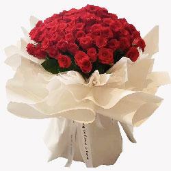 99朵红玫瑰,你是我心中最美的花