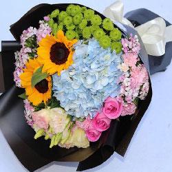 2朵向日葵,3朵粉玫瑰,愿您健康平安我爱您