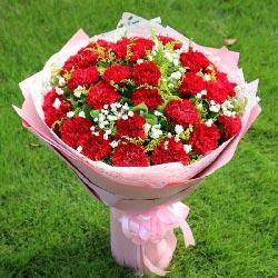 29朵红色康乃馨,健康幸福