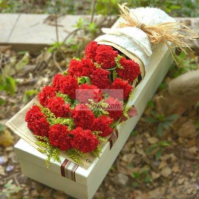 19朵红色康乃馨礼盒,是您哺育了我