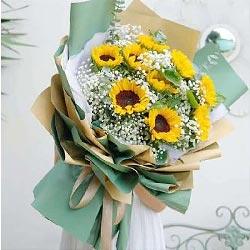 9朵向日葵,远方的祝福