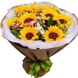 9朵向日葵,幸福快乐