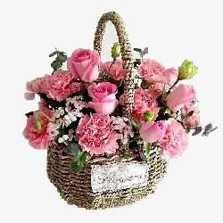 10朵粉色康乃馨,9朵粉色玫瑰,生活美好快乐一生